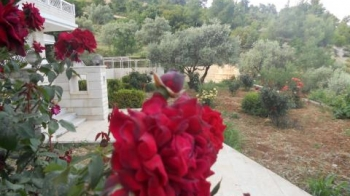 Ajloun Rent By Owner Vacation