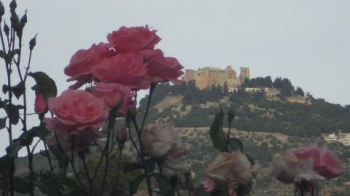 Ajloun My Vacation Rentals