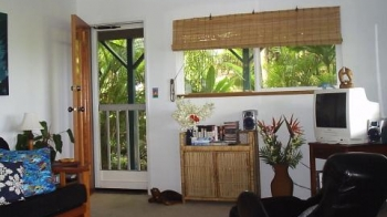 Hawaii Rent Apartment For Vacation